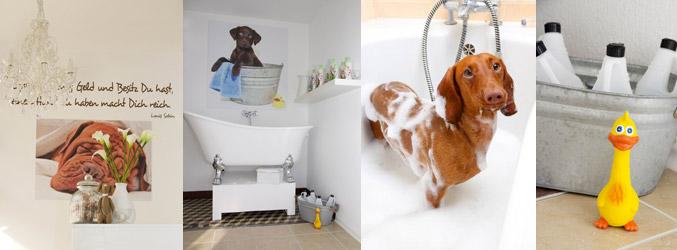 Hundesalon - Hundepflege - Giessen